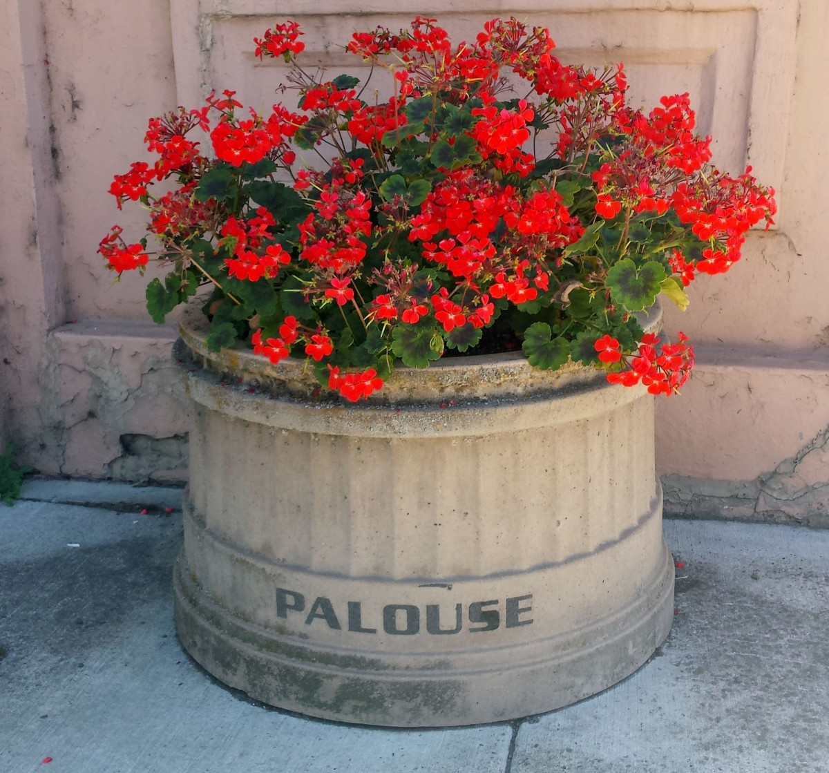 Palouse1