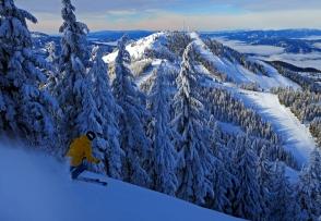 Awsome powder skiing at Silver Mountain.