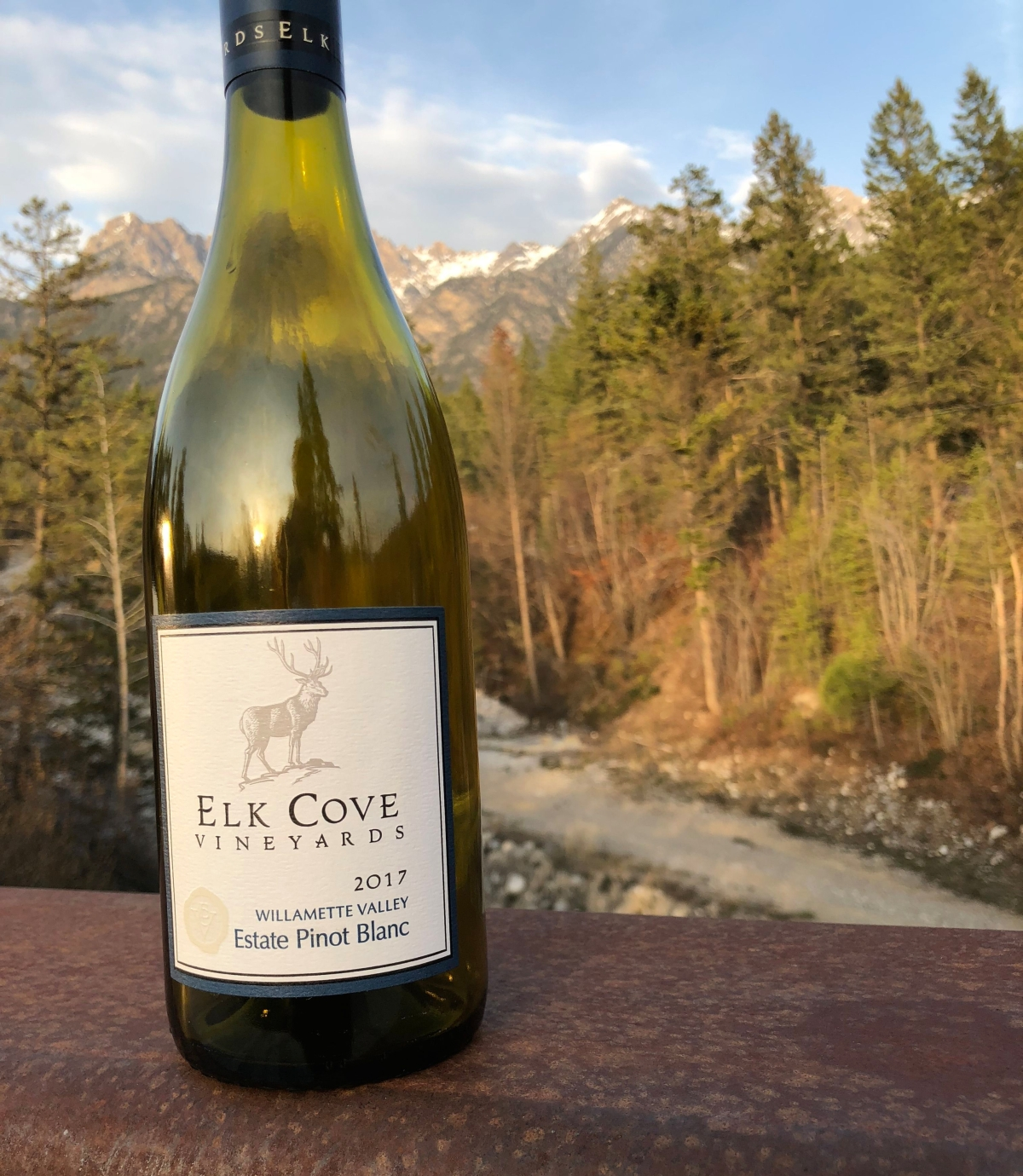Elk Cove Vineyards pinot blanc
